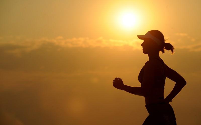 Fitness and Wellness Coordinators