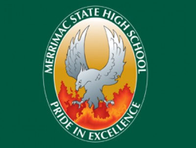 Mshs Logo website